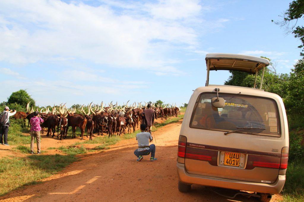Uganda Martyr's trails tour