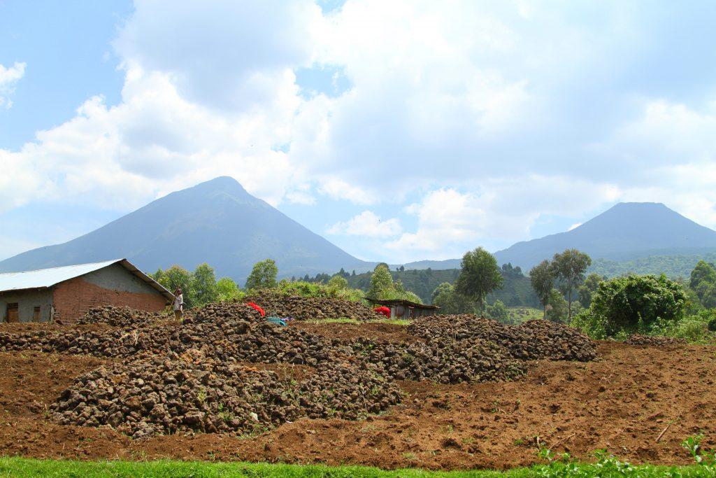Virunga Volcanies