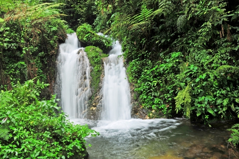 Munyaga Waterfall in Bwindi